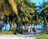 Blau Natura Park Beach Eco Resort Spa horseback riding
