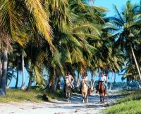 Blau Natura Park Beach Eco Resort Spa horseback riding